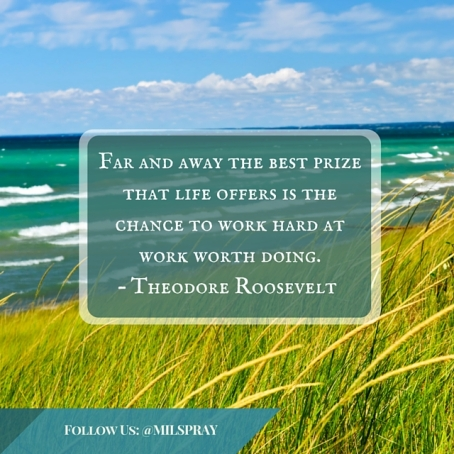 Far and away the best prize that life offers is the chance to work hard at work worth doing. – Theodore Roosevelt