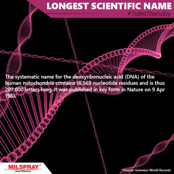 Random Fact on the longest name