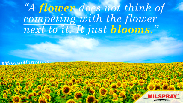 flower-field-monday-motivation