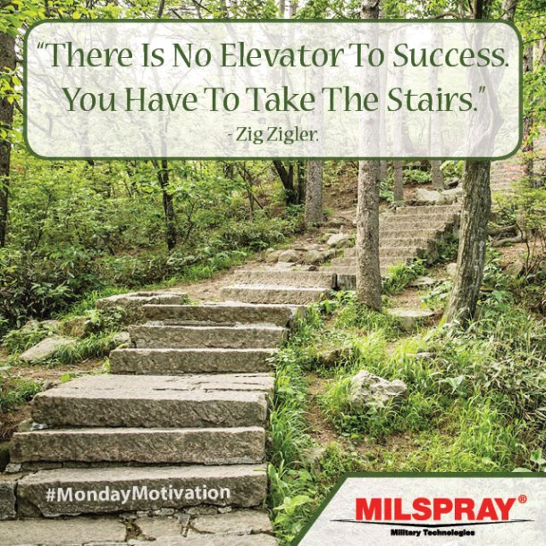 There-is-no-elevator-to-success-you-have-to-take-the-stairs