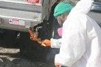 Tectyl Undercarriage Coatings Bay Head