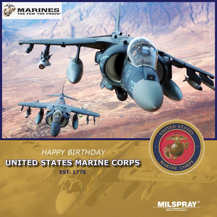 USMC Birthday 2020